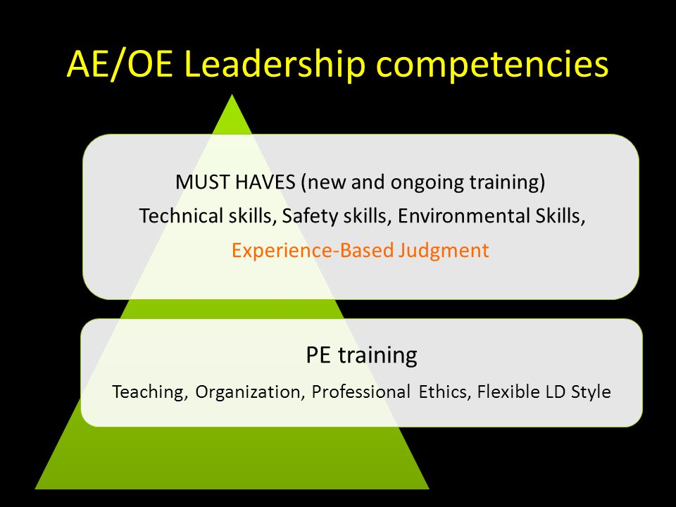 AE/OE Leadership competencies The Cream Facilitation, Problem Solving, Decision Making, Effective Communication MUST HAVES Technical skills, Safety skills, Environmental Skills, Experience-Based Judgment PE training (+ above) Teaching, Organization, Professional Ethics, Flexible LD Style