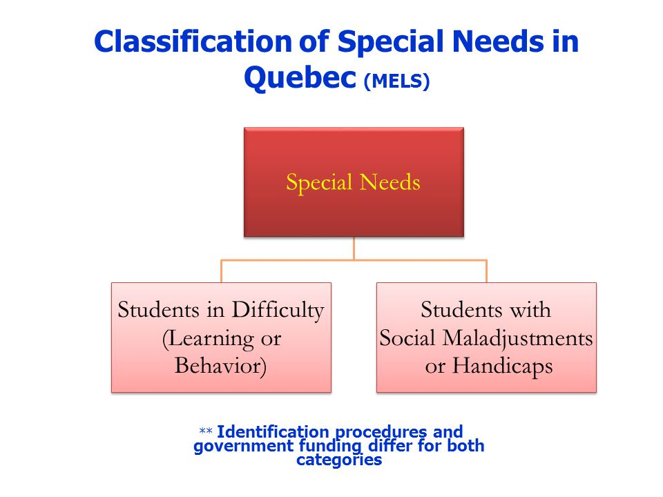 Students in difficulty Students identified as having academic difficulties and behavioral challenges – Learning difficulties/Mild Intellectual Delay – Behavior disorders a priori Funding, based on historical percentage of student population (10-12%) School boards determine identification, in accordance with MELS guidelines and collective agreements LBPSB Policy on Special Needs