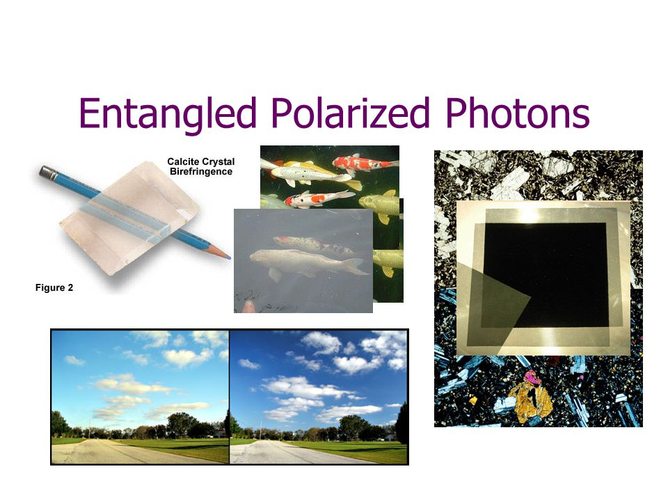 2)Four entangled pairs of photons head toward two vertical polarizers.