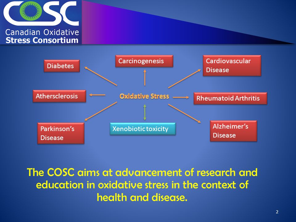 Carcinogenesis Cardiovascular Disease Cardiovascular Disease Rheumatoid Arthritis Alzheimer's Disease Alzheimer's Disease Athersclerosis Diabetes Xenobiotic toxicity Parkinson's Disease Parkinson's Disease 2 The COSC aims at advancement of research and education in oxidative stress in the context of health and disease.