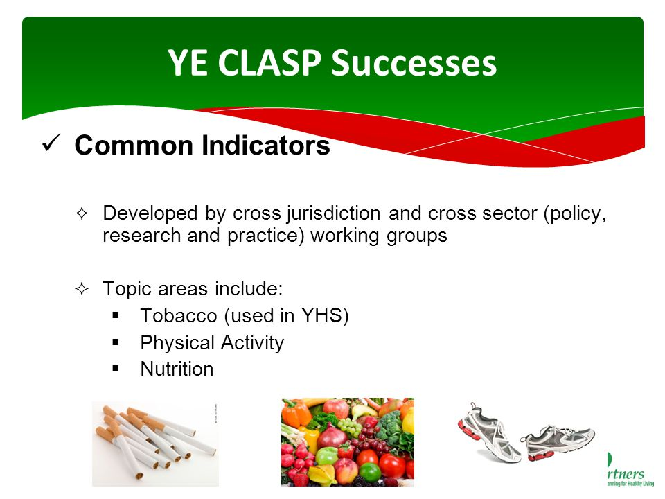 YE CLASP Successes Common Indicators  Developed by cross jurisdiction and cross sector (policy, research and practice) working groups  Topic areas include:  Tobacco (used in YHS)  Physical Activity  Nutrition