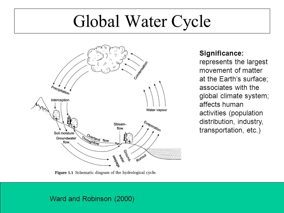 Water Table in a Hydrological System Ward and Robinson (2000)