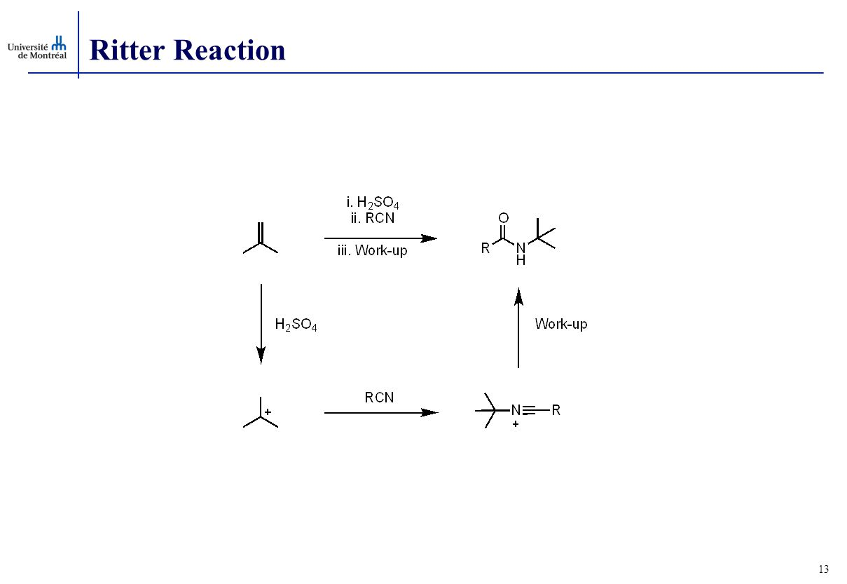 Ritter Reaction 13