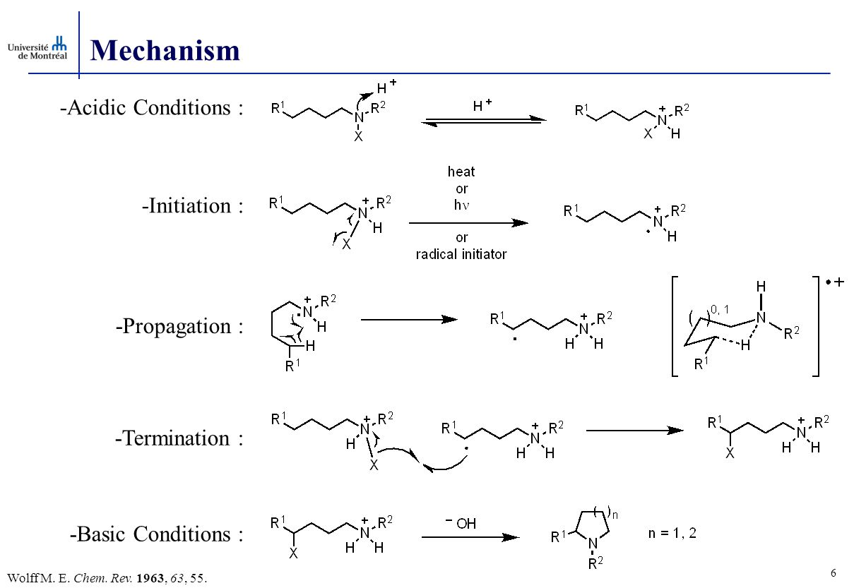 Mechanism -Initiation : -Propagation : -Termination : -Acidic Conditions : -Basic Conditions : 6 Wolff M.