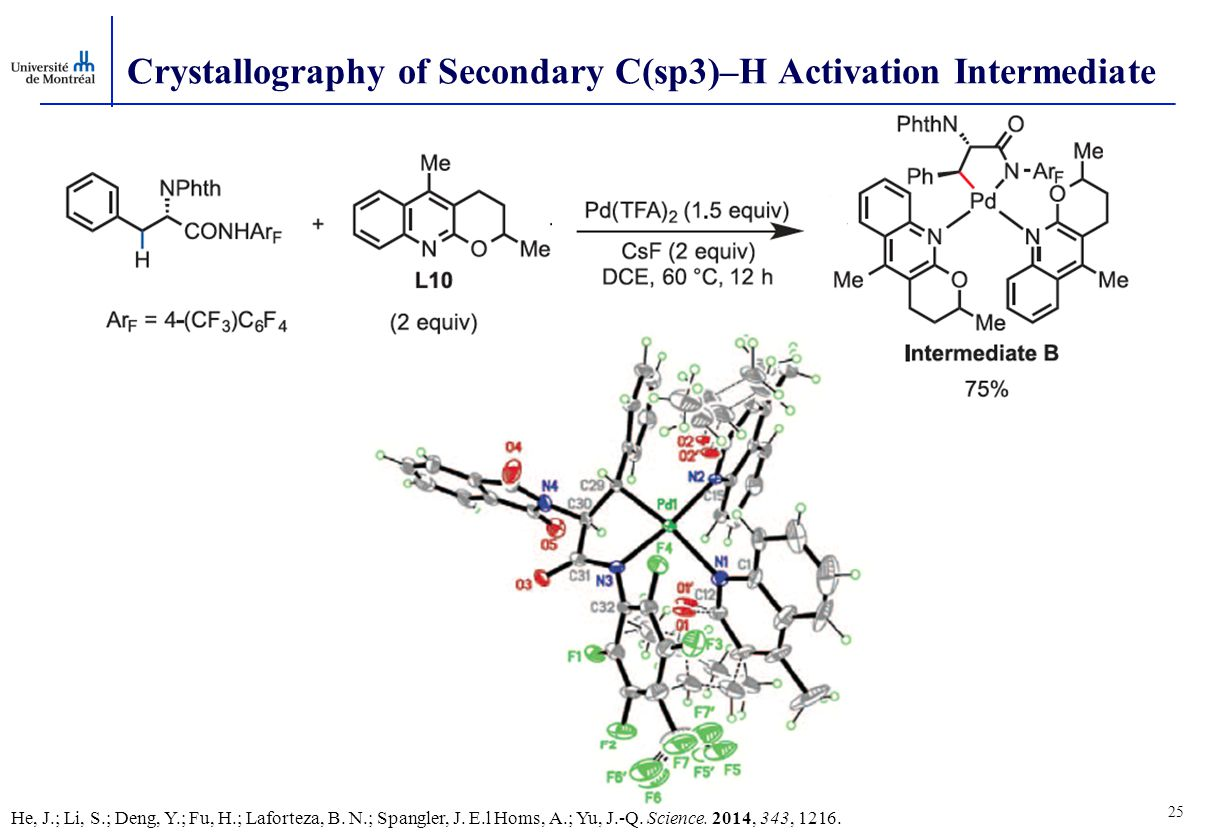 Crystallography of Secondary C(sp3)–H Activation Intermediate 25 He, J.; Li, S.; Deng, Y.; Fu, H.; Laforteza, B.