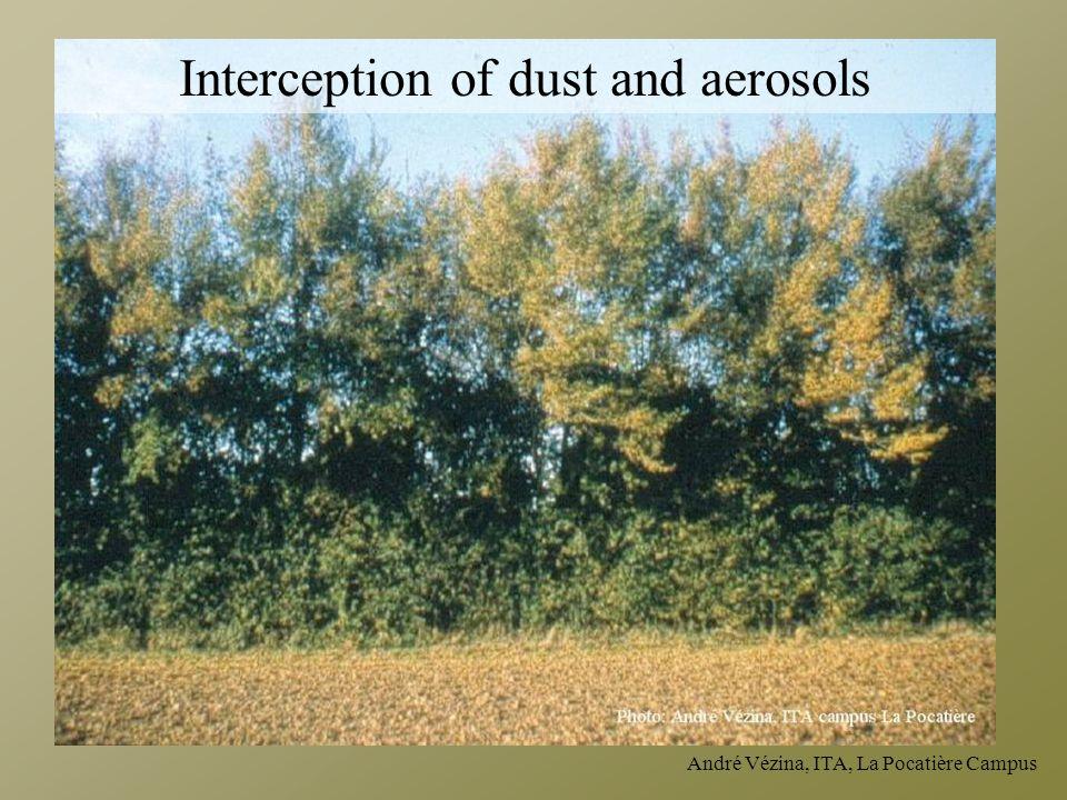 André Vézina, ITA, La Pocatière Campus Interception of dust and aerosols