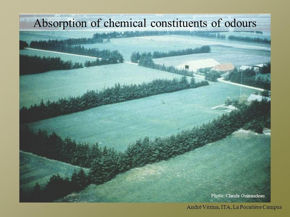André Vézina, ITA, La Pocatière Campus Absorption of chemical constituents of odours