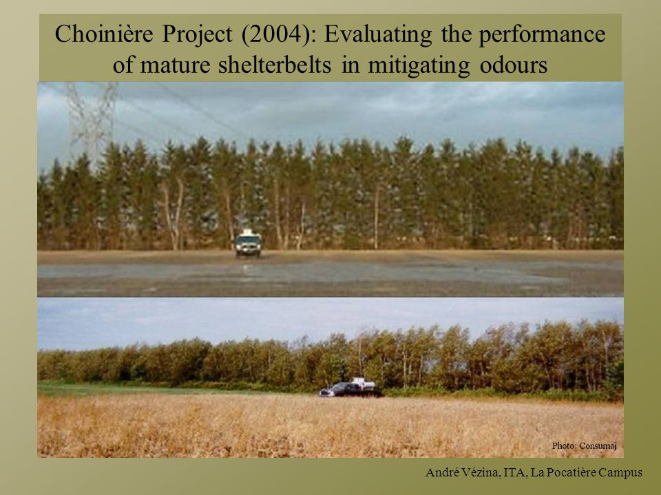 André Vézina, ITA, La Pocatière Campus Choinière Project (2004): Evaluating the performance of mature shelterbelts in mitigating odours