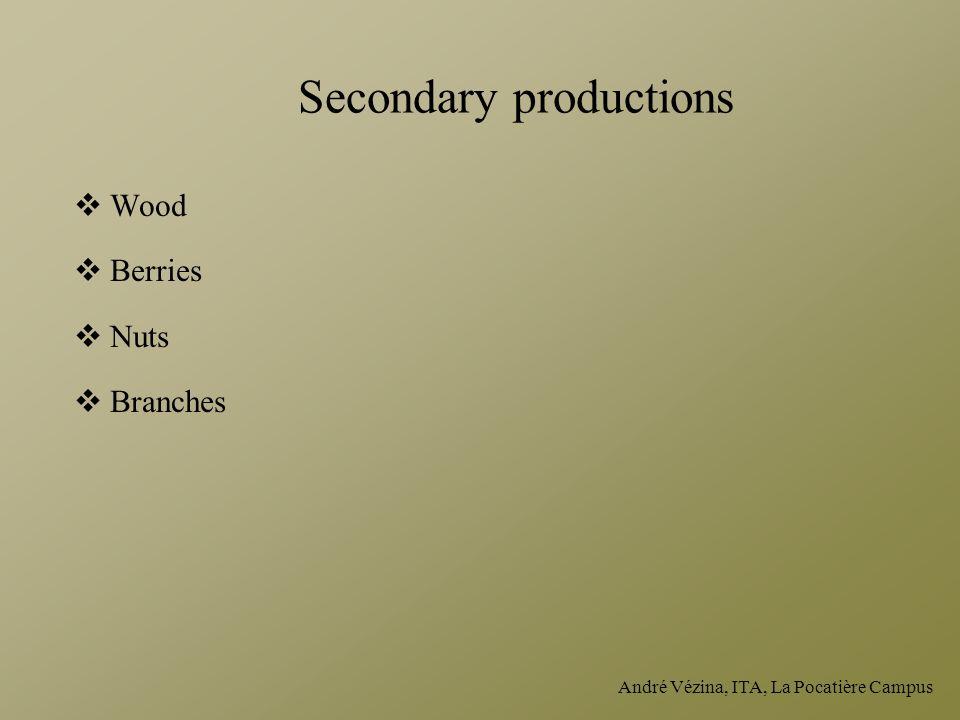 André Vézina, ITA, La Pocatière Campus Secondary productions  Wood  Berries  Nuts  Branches