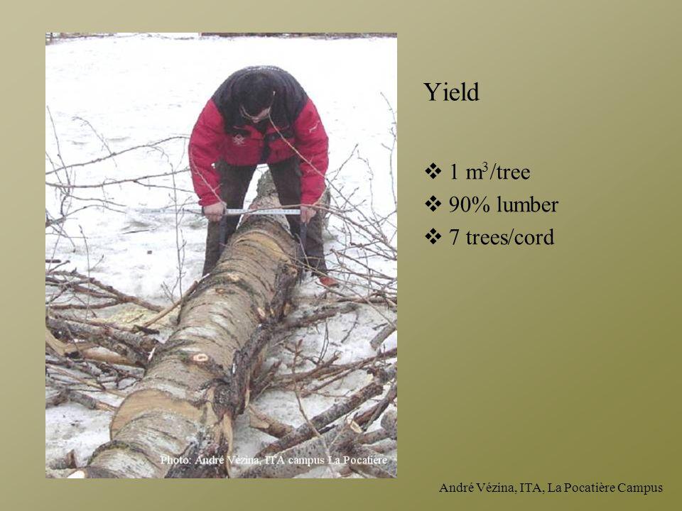 André Vézina, ITA, La Pocatière Campus Yield  1 m 3 /tree  90% lumber  7 trees/cord