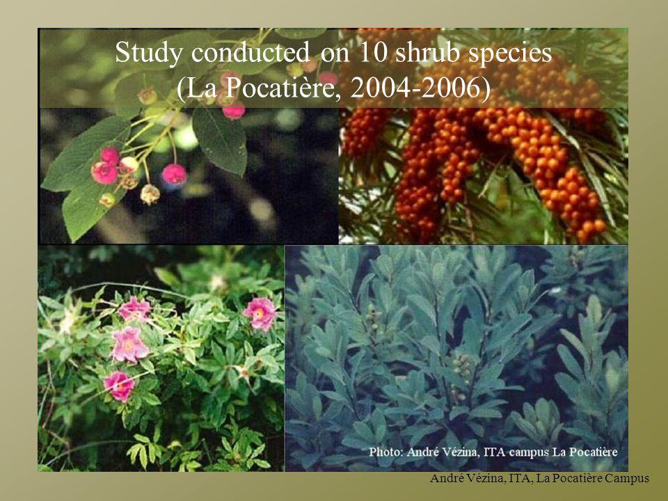 André Vézina, ITA, La Pocatière Campus Study conducted on 10 shrub species (La Pocatière, 2004-2006)