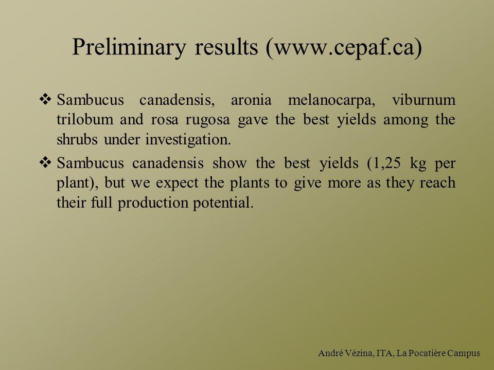 André Vézina, ITA, La Pocatière Campus Preliminary results (www.cepaf.ca)  Sambucus canadensis, aronia melanocarpa, viburnum trilobum and rosa rugosa