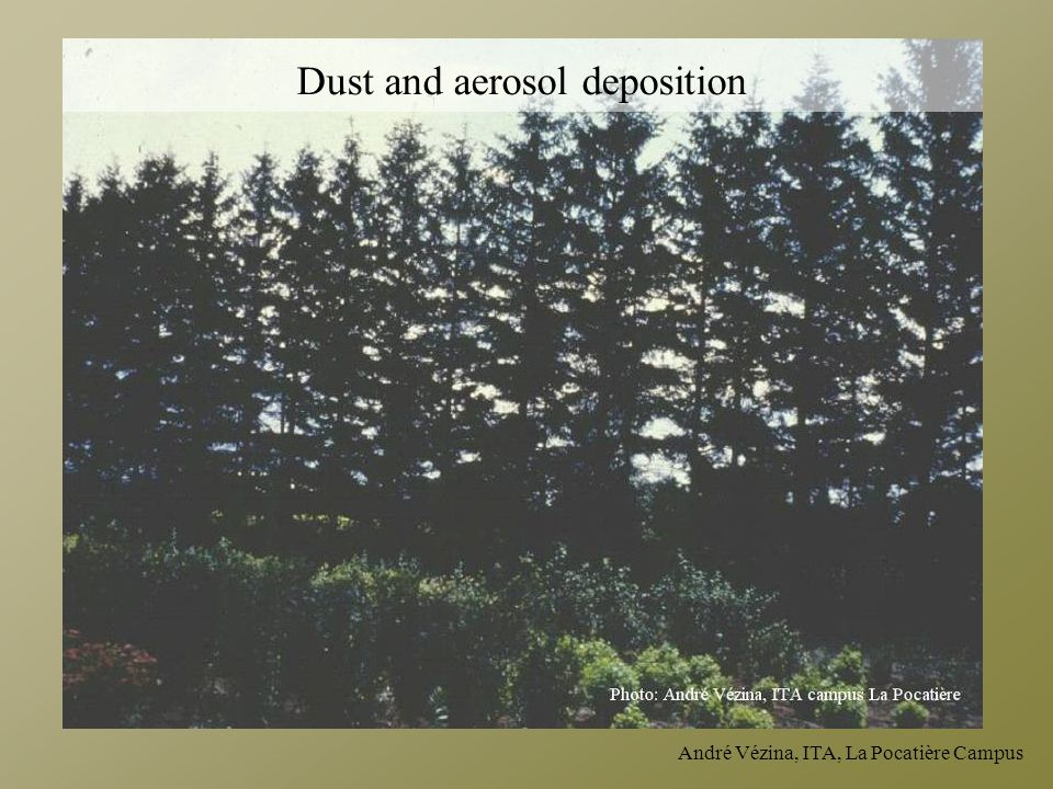 André Vézina, ITA, La Pocatière Campus Dust and aerosol deposition