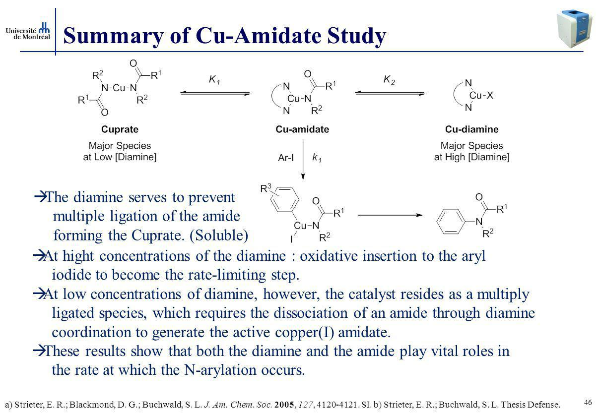46 Summary of Cu-Amidate Study  At hight concentrations of the diamine : oxidative insertion to the aryl iodide to become the rate-limiting step.