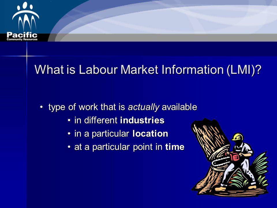 What is Labour Market Information (LMI).