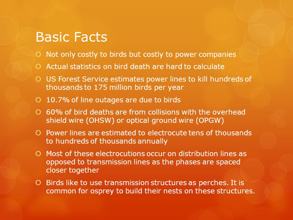 Basic Facts  Not only costly to birds but costly to power companies  Actual statistics on bird death are hard to calculate  US Forest Service estimates power lines to kill hundreds of thousands to 175 million birds per year  10.7% of line outages are due to birds  60% of bird deaths are from collisions with the overhead shield wire (OHSW) or optical ground wire (OPGW)  Power lines are estimated to electrocute tens of thousands to hundreds of thousands annually  Most of these electrocutions occur on distribution lines as opposed to transmission lines as the phases are spaced closer together  Birds like to use transmission structures as perches.