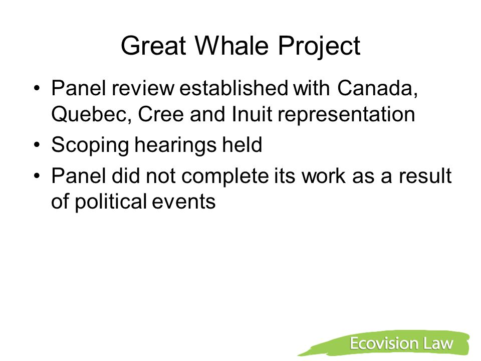 Great Whale Project Panel review established with Canada, Quebec, Cree and Inuit representation Scoping hearings held Panel did not complete its work as a result of political events