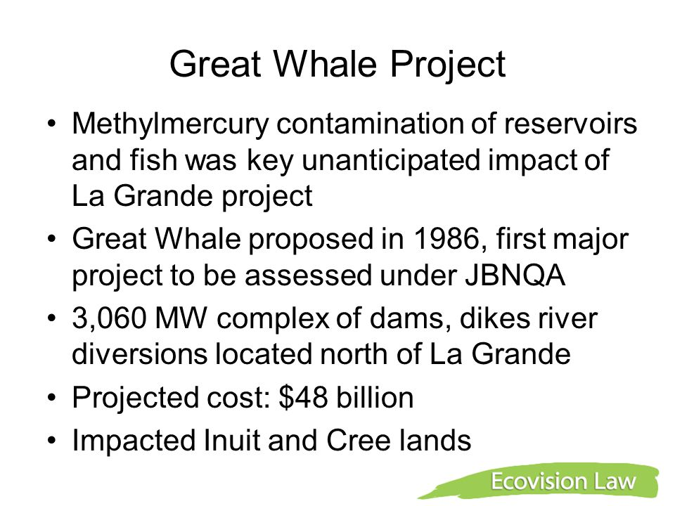 Great Whale Project Methylmercury contamination of reservoirs and fish was key unanticipated impact of La Grande project Great Whale proposed in 1986, first major project to be assessed under JBNQA 3,060 MW complex of dams, dikes river diversions located north of La Grande Projected cost: $48 billion Impacted Inuit and Cree lands