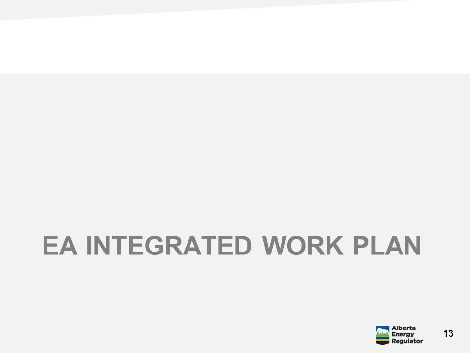 EA INTEGRATED WORK PLAN 13