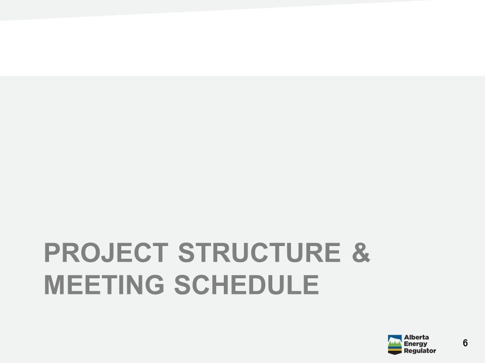 PROJECT STRUCTURE & MEETING SCHEDULE 6