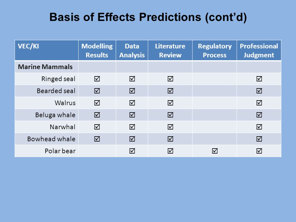Basis of Effects Predictions (cont'd) VEC/KIModelling Results Data Analysis Literature Review Regulatory Process Professional Judgment Marine Mammals