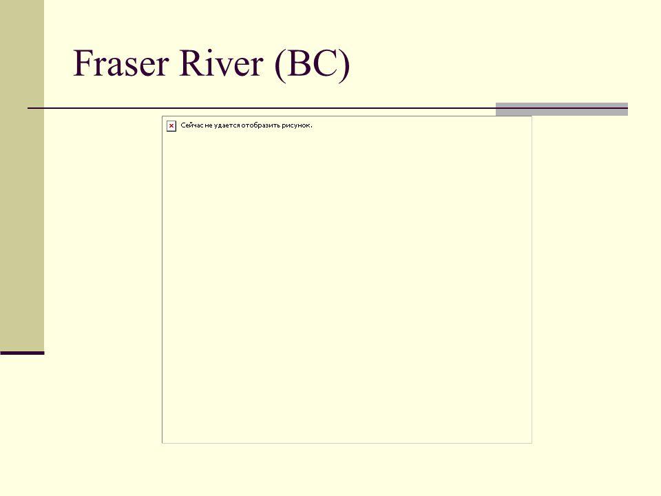 Fraser River (BC)