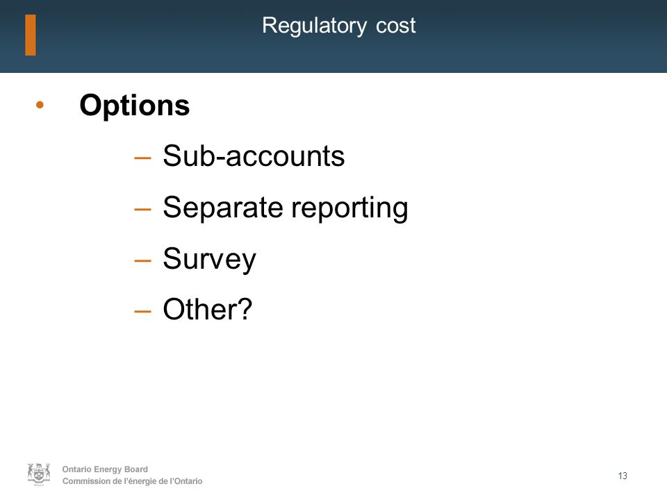 13 Regulatory cost Options –Sub-accounts –Separate reporting –Survey –Other?