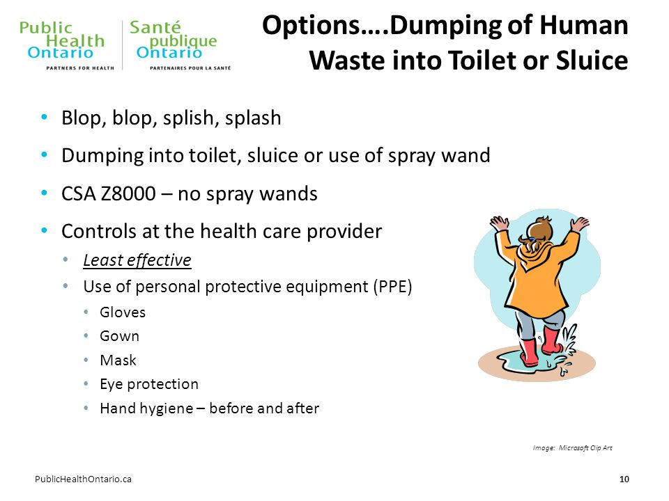 PublicHealthOntario.ca Options….Dumping of Human Waste into Toilet or Sluice Blop, blop, splish, splash Dumping into toilet, sluice or use of spray wa