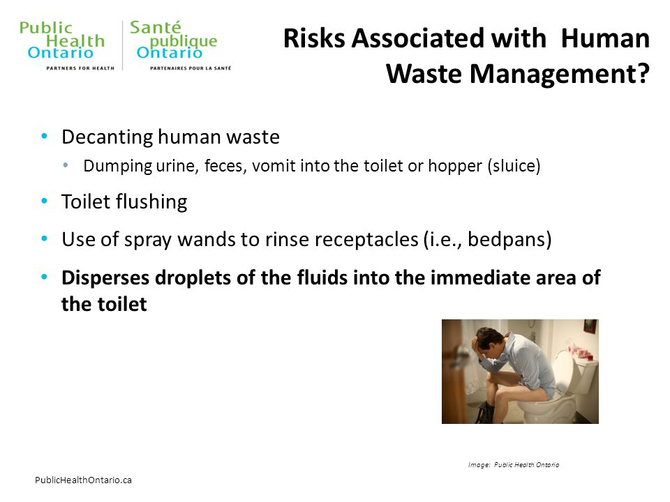 PublicHealthOntario.ca Risks Associated with Human Waste Management? Decanting human waste Dumping urine, feces, vomit into the toilet or hopper (slui