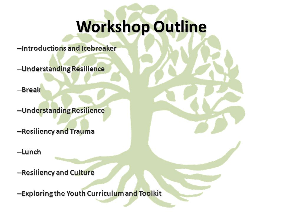 Workshop Outline – Introductions and Icebreaker – Understanding Resilience – Break – Understanding Resilience – Resiliency and Trauma – Lunch – Resiliency and Culture – Exploring the Youth Curriculum and Toolkit