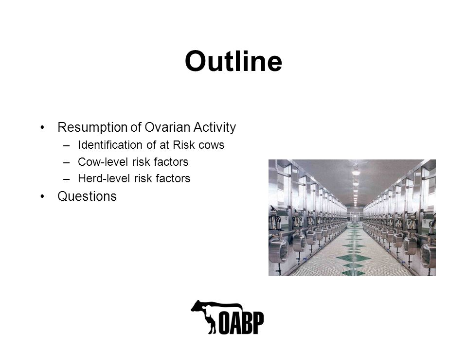 Outline Resumption of Ovarian Activity –Identification of at Risk cows –Cow-level risk factors –Herd-level risk factors Questions