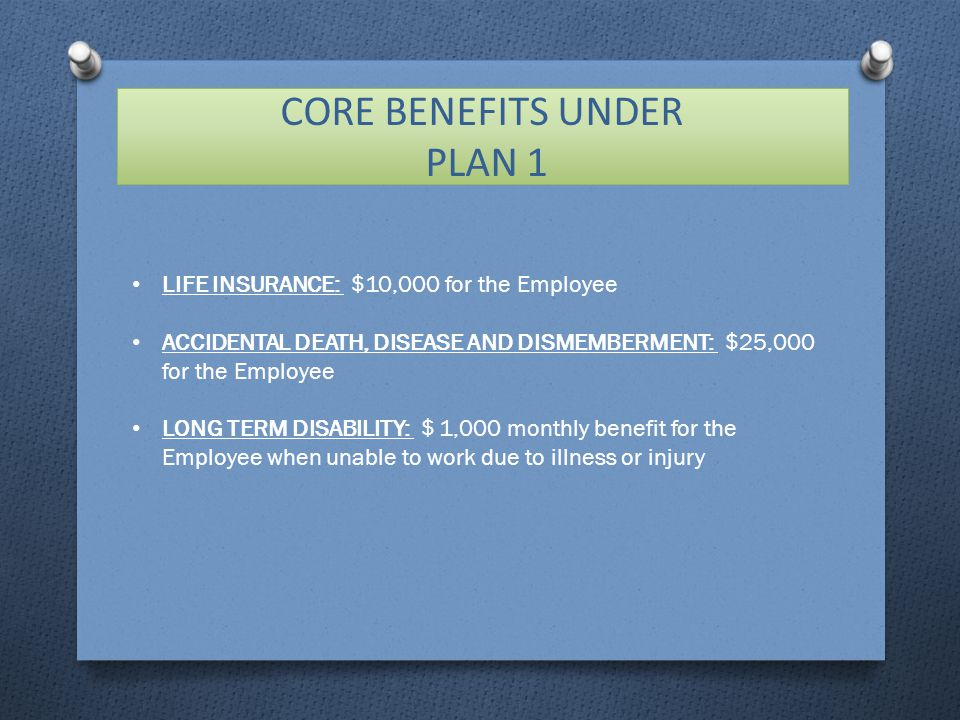 CORE BENEFITS UNDER PLAN 1 LIFE INSURANCE: $10,000 for the Employee ACCIDENTAL DEATH, DISEASE AND DISMEMBERMENT: $25,000 for the Employee LONG TERM DISABILITY: $ 1,000 monthly benefit for the Employee when unable to work due to illness or injury
