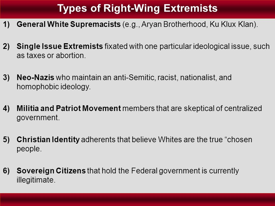 1)General White Supremacists (e.g., Aryan Brotherhood, Ku Klux Klan). 2)Single Issue Extremists fixated with one particular ideological issue, such as