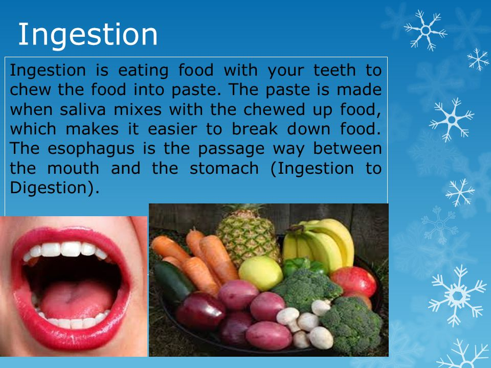 Ingestion Ingestion is eating food with your teeth to chew the food into paste.
