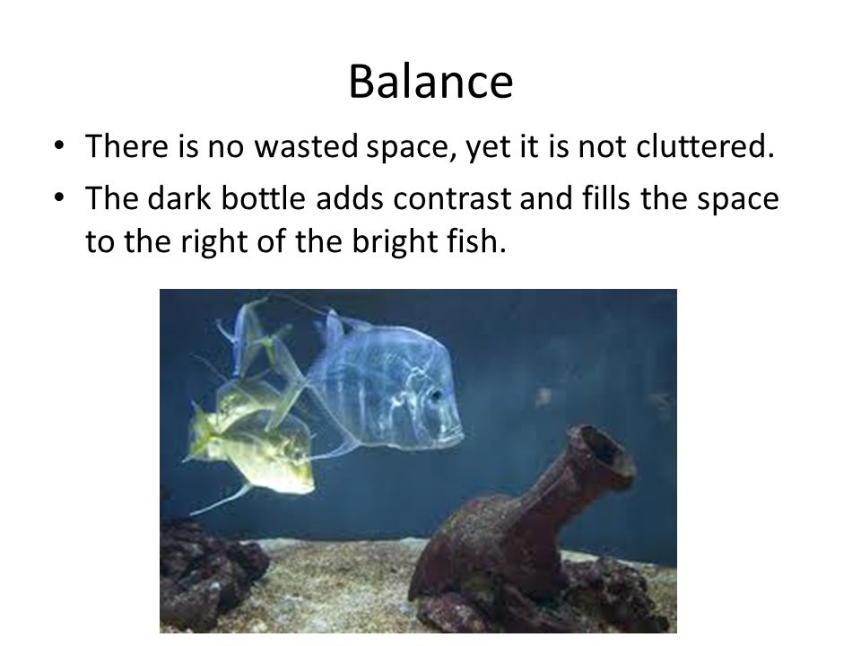 Balance There is no wasted space, yet it is not cluttered. The dark bottle adds contrast and fills the space to the right of the bright fish.