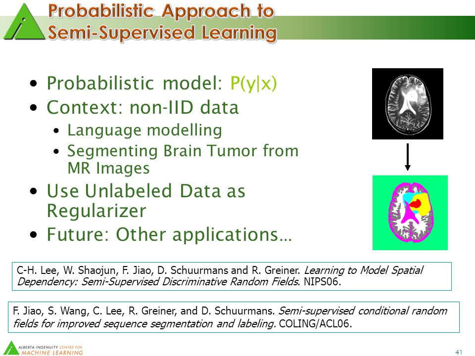 41 Probabilistic model: P(y|x) Context: non-IID data Language modelling Segmenting Brain Tumor from MR Images Use Unlabeled Data as Regularizer Future: Other applications … C-H.