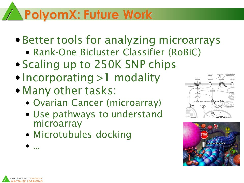 PolyomX: Future Work Better tools for analyzing microarrays Rank-One Bicluster Classifier (RoBiC) Scaling up to 250K SNP chips Incorporating >1 modality Many other tasks: Ovarian Cancer (microarray) Use pathways to understand microarray Microtubules docking …