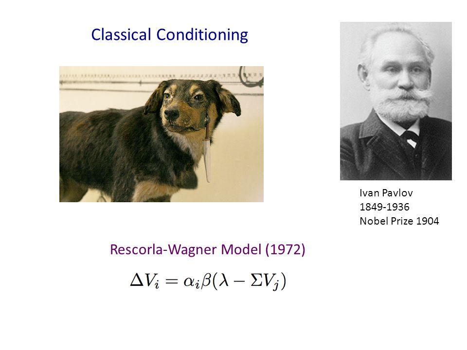 Ivan Pavlov 1849-1936 Nobel Prize 1904 Classical Conditioning Rescorla-Wagner Model (1972)