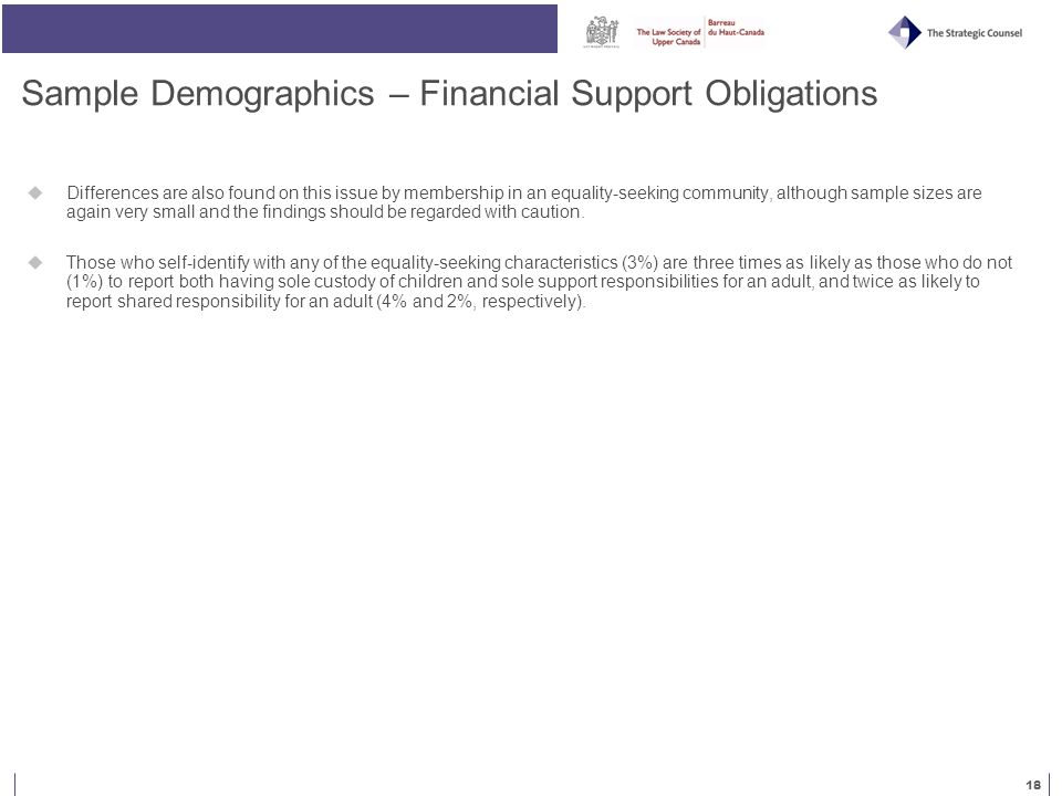 18 Sample Demographics – Financial Support Obligations  Differences are also found on this issue by membership in an equality-seeking community, although sample sizes are again very small and the findings should be regarded with caution.