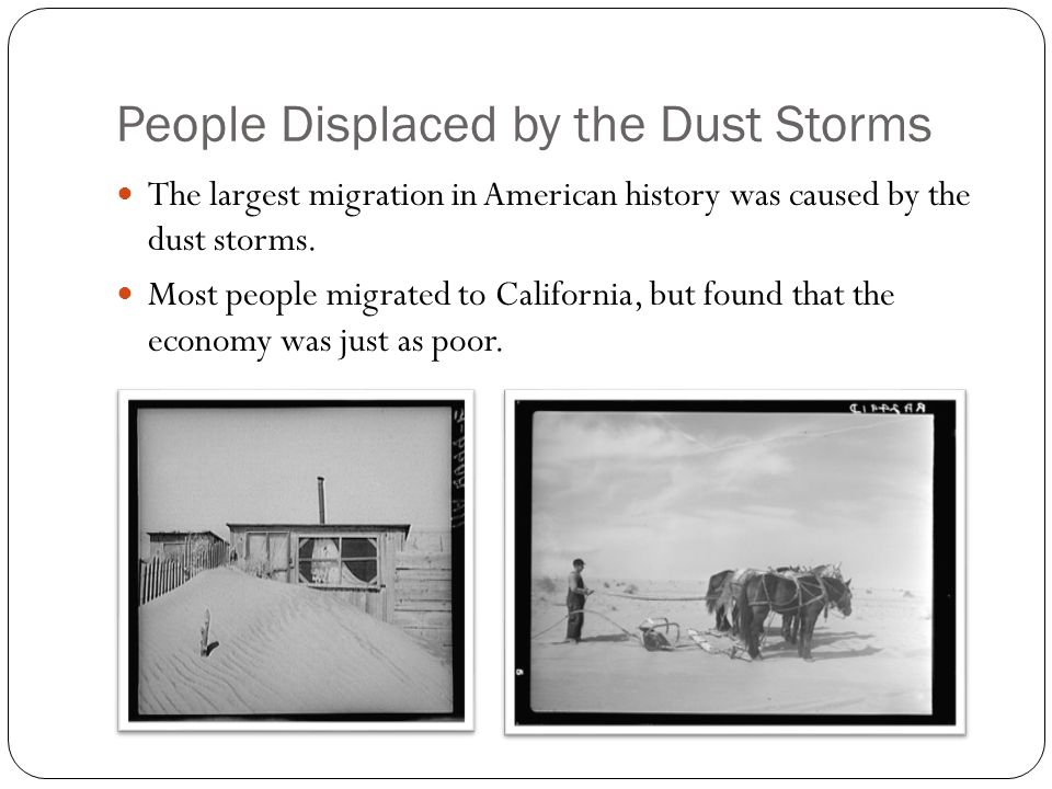People Displaced by the Dust Storms The largest migration in American history was caused by the dust storms. Most people migrated to California, but f
