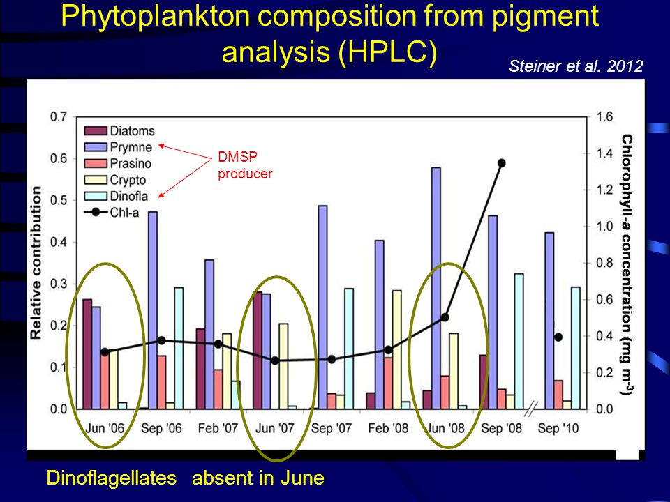 Phytoplankton composition from pigment analysis (HPLC) No downward trend in August! DMSP producer Dinoflagellates absent in June