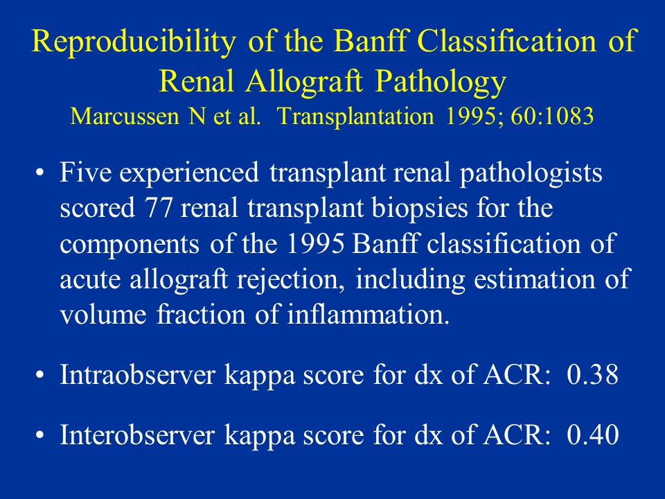 Reproducibility of the Banff Classification of Renal Allograft Pathology Marcussen N et al.