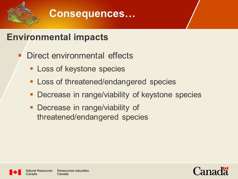 Environmental impacts  Direct environmental effects  Loss of keystone species  Loss of threatened/endangered species  Decrease in range/viability of keystone species  Decrease in range/viability of threatened/endangered species Consequences…