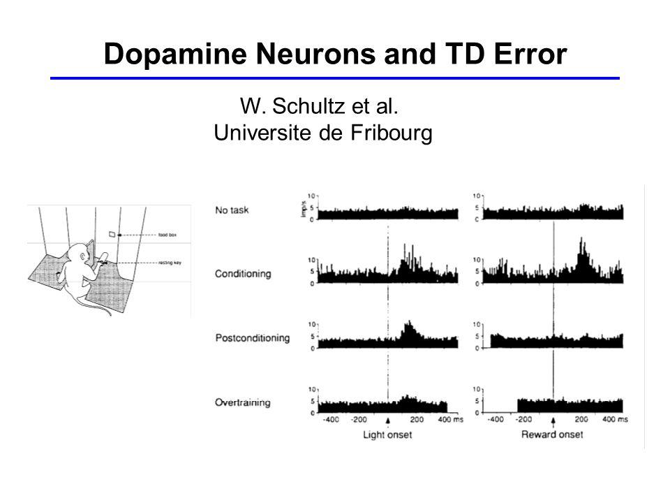 Dopamine Neurons and TD Error W. Schultz et al. Universite de Fribourg