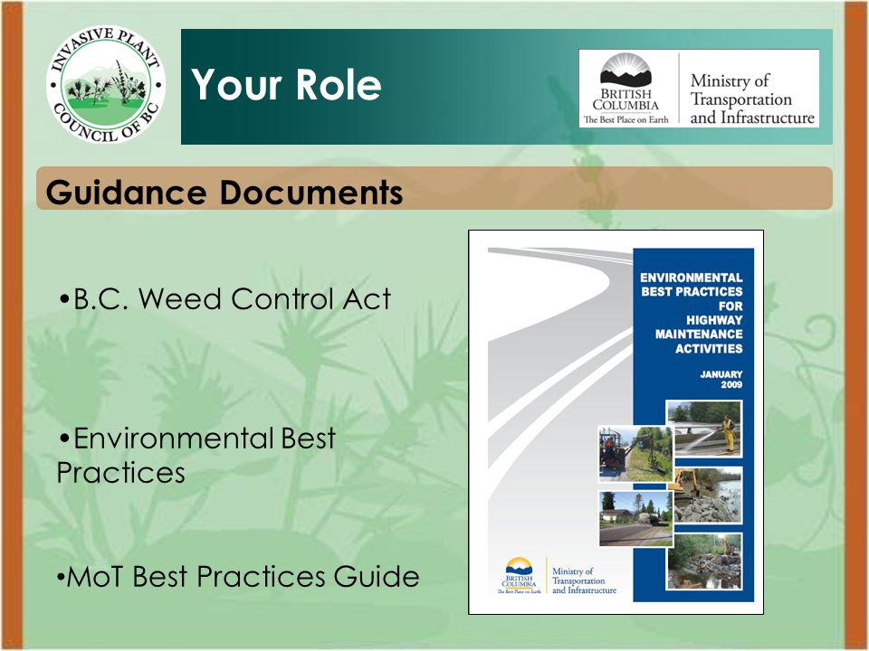 Your Role What can you do to manage invasive plants during highway inspections?