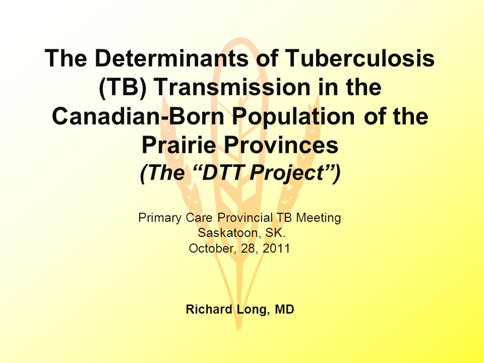 The Determinants of Tuberculosis (TB) Transmission in the Canadian-Born Population of the Prairie Provinces (The DTT Project ) Primary Care Provincial TB Meeting Saskatoon, SK.