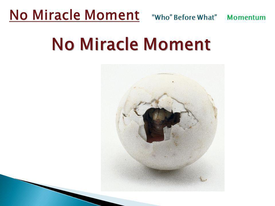 No Miracle Moment