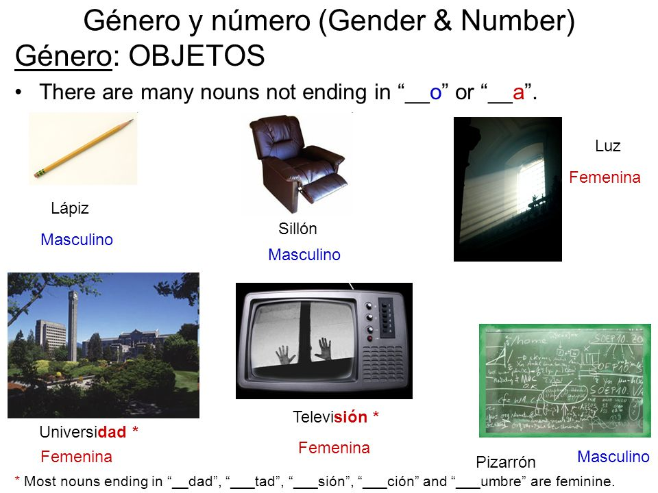 Género y número (Gender & Number) Género: OBJETOS There are many nouns not ending in __o or __a .
