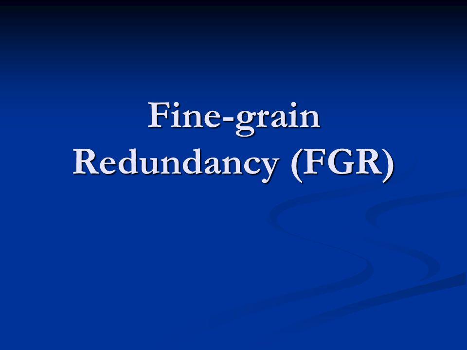 Fine-grain Redundancy (FGR)