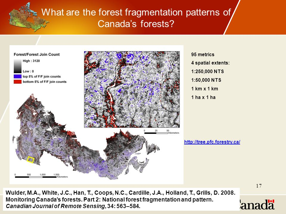 Wulder, M.A., White, J.C., Han, T., Coops, N.C., Cardille, J.A., Holland, T., Grills, D. 2008. Monitoring Canada's forests. Part 2: National forest fr